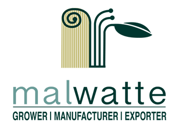 malwatte corporate logo